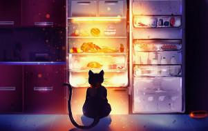 рисованное, животные,  коты, холодильник, кот