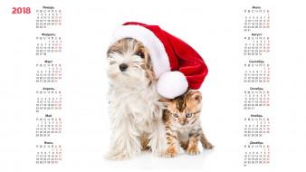 календари, животные, шапка, собака