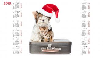 календари, животные, белый, фон, шапка, собака