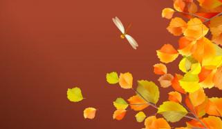 стрекоза, осень, листья