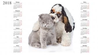 календари, животные, кошка, собака, белый, фон