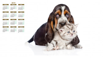календари, животные, собака, белый, фон, кошка