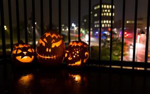 тыквы, ночь, Halloween