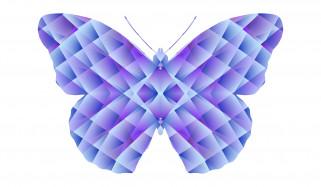 векторная графика, животные , animals, фон, бабочка