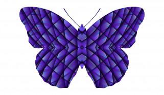 фон, бабочка