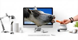 обои для рабочего стола 2732x1416 юмор и приколы, монитор, лошадь