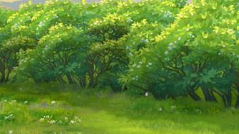 трава, растения