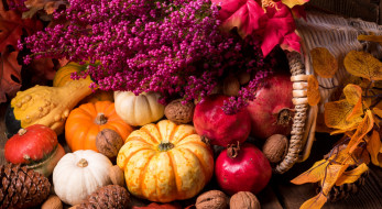 листья, натюрморт, цветы, гранат, тыква, орехи, дары осени