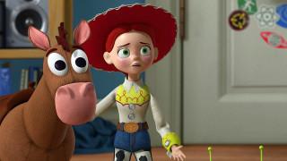 взгляд, лошадь, девушка, шляпа