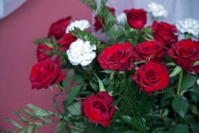 розы, гвоздика