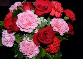 розы, гвоздики
