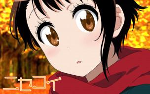 аниме, nisekoi, взгляд, фон, девушка
