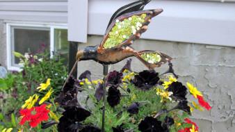 петунии, птица