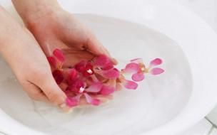 орхидеи, лепестки