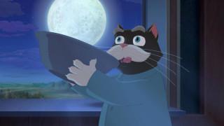 окно, ночь, кот, луна, миска