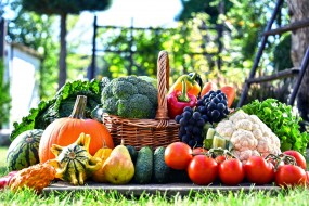 виноград, груши, помидоры, тыква, капуста, арбуз