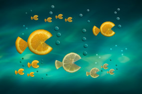 цитрусы, рыбки, Fish in the Sea, дольки
