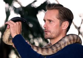 мужчины, alexander skarsg&, 229, rd, змея