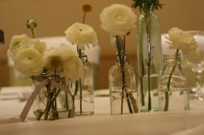 азиатский лютик, бутоны, цветы, белые, ранункулюс