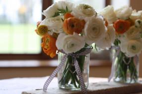 белые, ранункулюс, бутоны, азиатский лютик, букет, цветы