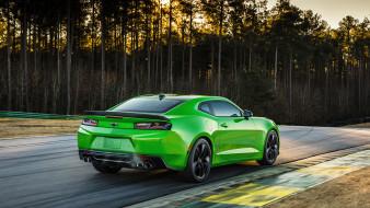 Camaro, 1LE, Green, 2017, Chevrolet
