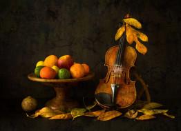 музыка, -музыкальные инструменты, скрипка, листья, фрукты, autumn, mood