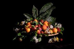 натюрморт, фрукты, ягоды, листья