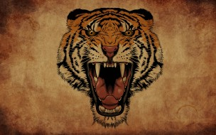 клыки, рык, тигр, пасть, фон
