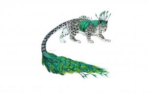 рисованное, животные,  сказочные,  мифические, зверь, хвост, перья, павлин, барс, гибрид