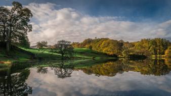 озеро, осень, деревья, Англия, Камбрия