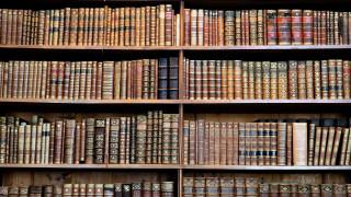 библиотека, полки, книги
