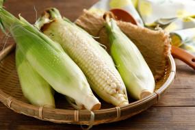 капли, корзина, кукуруза