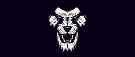 White, lion, black