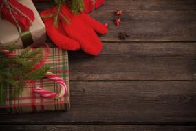 праздиник, подарок, варежка, ветка ели, новый год