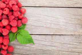 малина, лист, ягода