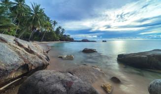 море, лето, природа, пальмы, пляж, тропики