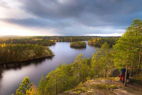 природа, деревья, река, лес