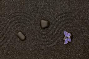текстура, бабочка, песок, камень