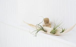 нитки, клубки, растения