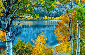 осень, озеро