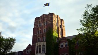 плющ, здание, флаг