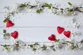 день святого Валентина, праздник, цветы, сердечки