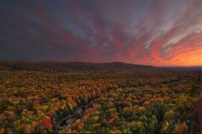 природа, закат, деревья, осень, лес