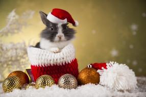 кролик, игрушки, праздник, мешок, новый год