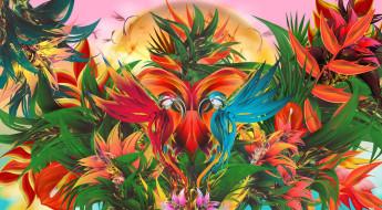 узор, птицы, симметрия, краски
