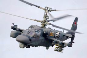 Аллигатор, КА- 52, вертолёт