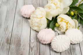 пионы, цветы, сладость, зефир