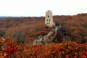 башня, осень