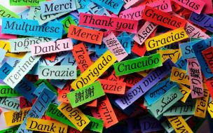 надписи, благодарность
