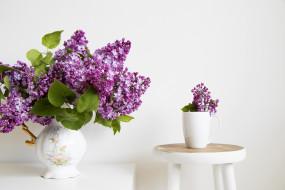 цветы, кружка, сирень, букет, ваза
